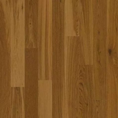 Amber-Oak